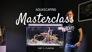Download Aquascaping Masterclass | Step by Step Aquascape Tutorial - Part 2 Video