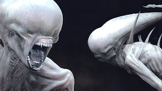 Download The NEOMORPH Explained. Video