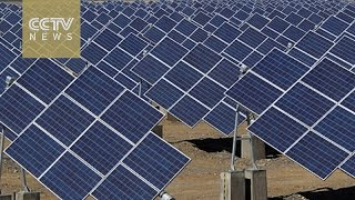 Download Renewable energy: EU's trade barriers against Chinese solar panels Video