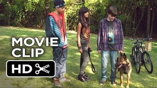 Download Max Movie CLIP - Air Jordan of Dogs (2015) - War Dog Drama HD Video