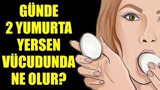 Download Günde İki Yumurta Yiyince Bakın Vücudunuzda Neler Oluyor? Video