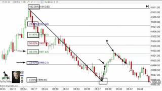 Download Day Trading Rules - Secret to Using Fibonacci Levels Video