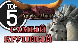 Download ТОП 5. САМЫЕ ОГРОМНЫЕ ДРАКОНЫ из мультсериала Драконы. Video