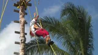 Download Ritual ceremony of the Voladores Video