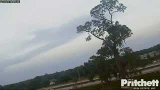 Download Southwest Florida Eagle Cam - Harriet Missing Her Baby E6... Video