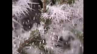 Download Rolf Zuckowski   Es schneit Video