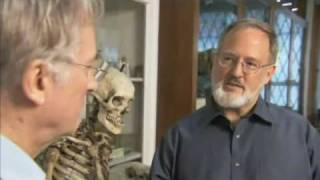 Download Intelligent Design: Curing Diseases With Darwinian Medicine Video
