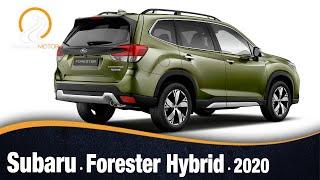 Download Subaru Forester Hybrid 2020 | Información y Review Video