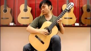 Download Por una Cabeza - Carlos Gardel ″Guitar Solo″ (Steven Law) Video