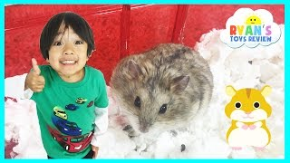 Download Ryan ToysReview first pet Buying Hamster from PetSmart Family Fun Trip animal toys Kids Video Video