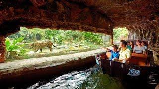 Download Singapore River Safari Amazon River Quest | Singapore Zoo | 2018 Video