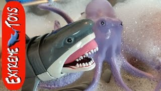 Download Fishing for Shark Toys In the Bubbles! Surprise Sea Creatures in the Bubbles. Video