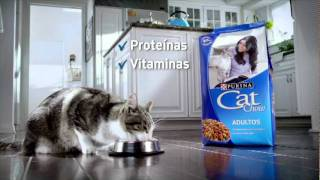 Download Purina Cat chow -Sofi- Video