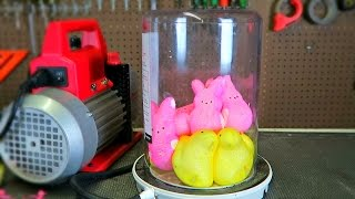 Download What Will Happen If You Put Peeps in a Vacuum Chamber? - Easter Special Video