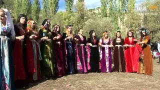 Download HOZAN ŞEVİN Video