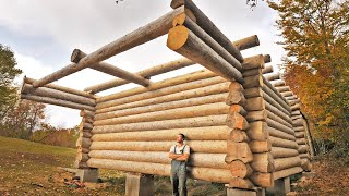 Download One Year of Log Cabin Building / One Man Odyssey Building His Dream House Video