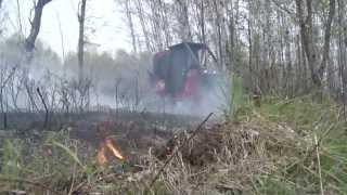 Download Discovering - DNR Prescribed Burn, Grouse Woodcock Survey Video