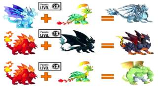 Download How To Breed All Dragons in Dragon City Video
