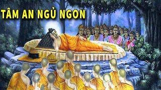 Download Đêm Trằn Trọc Khó Ngủ - Hãy Nghe Phật Kể về Nhân Quả Trong Cuộc Sống Để Tâm An Hướng Thiện Ngủ Ngon Video