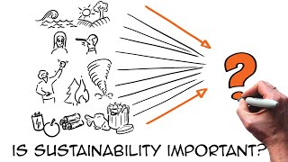 Download The sustainability challenge explained (through animation) Video