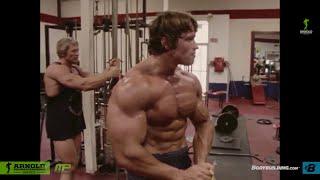Download Arnold Schwarzenegger olympia bodybuilding motivation 2015 Video