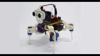 Download Video Demo | Robot Araña Version 2 | KaiwaTec Video