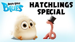 Download Angry Birds Special | The Early Hatchling Gets The Worm Video