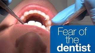 Download How to manage your fear of the dentist Video