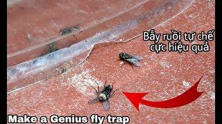 Download Cách chế 1 chiếc bẫy ruồi cực kì hiệu quả Video