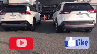Download 2019 Rav4 Limited Hybrid vs. XSE Hybrid | You Decide | First Look Walkaround Video