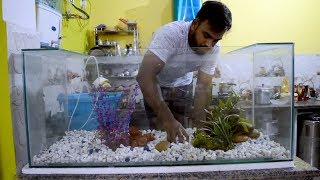 Download Aquarium : first time setup Video