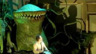 Download Little Shop of Horrors trailer Video