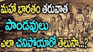 Download పాండవులు ఎలా చనిపోయారో తెలుస్తే షాక్ అవ్వాల్సిందే || Pandavas Death Mystery || SumanTV Video