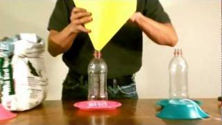 Download How to make a Bird feeder with Water Bottles Video