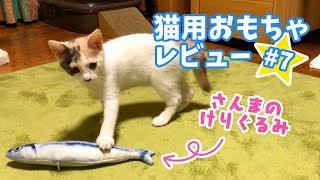 Download 遊んでる姿がシュールで面白い魚のけりぐるみ【猫用おもちゃレビュー#7】 Video