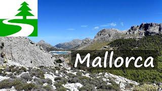 Download Die schönsten Wanderungen auf Mallorca Video