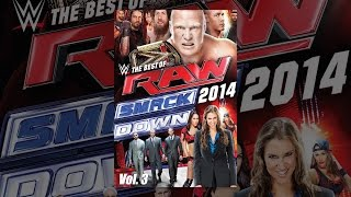 Download WWE: The Best of Raw and Smackdown (2014): Volume 3 Video