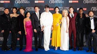 Download FANTASTIC BEASTS 2 UK Premiere Red Carpet - The Crimes of Grindelwald Video