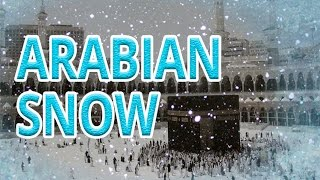 Download BREAKING NEWS - SNOW IN SAUDI ARABIA الثلوج في جزيره العرب Video
