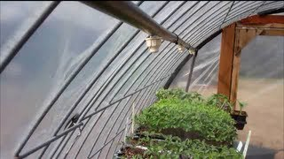 Download Greenhouse Misting System Video