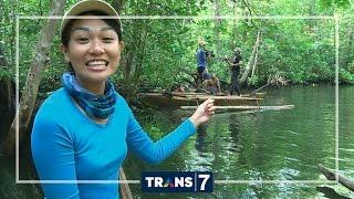 Download JEJAK PETUALANG - SARANG RAJA MUARA HALMAHERA (11/7/16) 3-1 Video
