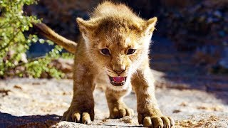 Download New THE LION KING Behind The Scenes Trailer Video