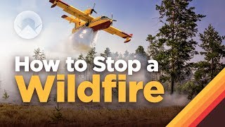 Download How Fighting Wildfires Works Video