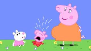Download Peppa Pig en Español Episodios completos 🍼Niños   Pepa la cerdita Video