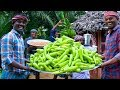 Download MIRCHI & RAW BANANA BAJJI | 1000 Bajji Making in Village | Milagai Vazhakkai Bajji | Rainy Snacks Video
