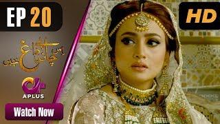 Download Drama   Is Chand Pe Dagh Nahin - Episode 20   Aplus ᴴᴰ Dramas   Zarnish Khan, Firdous Jamal Video