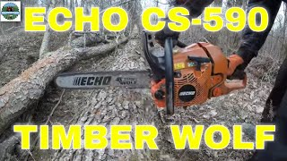 Download Echo CS-590 Timber Wolf Review After 2 Years #25 Video