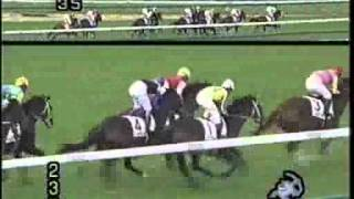 Download ディープインパクト新馬戦 上がり33.4秒 Video