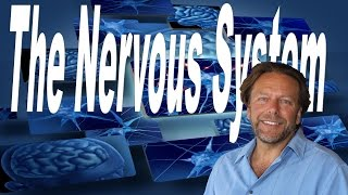 Download The Nervous System: The Master System Video