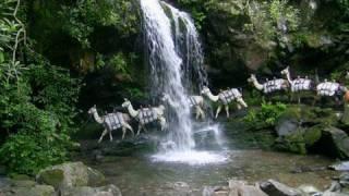 Download Mt. Le Conte Lodge Llama Train, Great Smoky Mountains Video